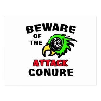 Attack Conure Postcard