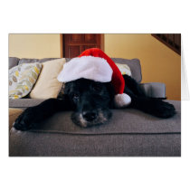 Attack dog on duty Christmas card