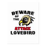 Attack Lovebird Post Cards