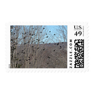 Attack of the Birds Postage Stamp