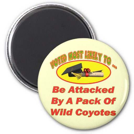 Attacked By Coyotes 2 Inch Round Magnet