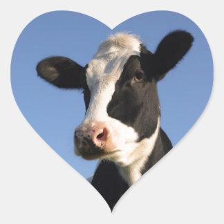 Attentive cow heart sticker
