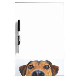 Attentive dog's nose dry erase board