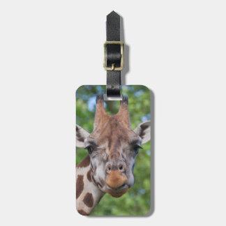 Attentive Giraffe Bag Tag