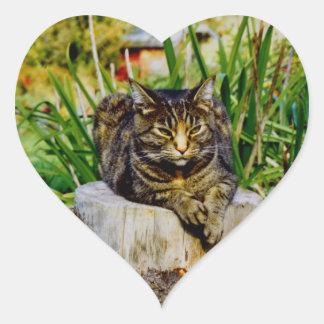 ATTITUDE CAT HEART STICKERS