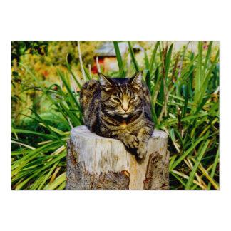 Attitude Cat 5x7 Paper Invitation Card