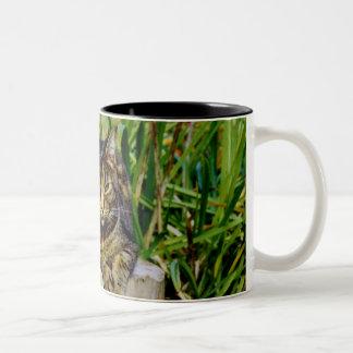 Attitude Cat Two-Tone Coffee Mug