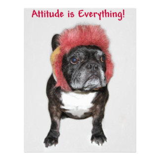 attitude is everything funny bulldog with hat letterhead