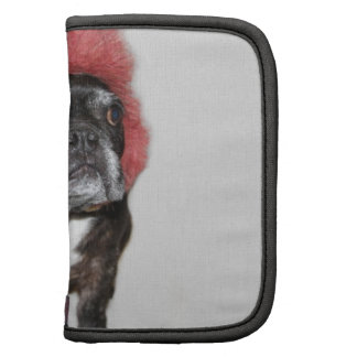 attitude is everything funny bulldog with hat organizer