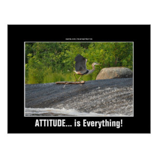 ATTITUDE IS EVERYTHING Great Blue Heron Falls Poster