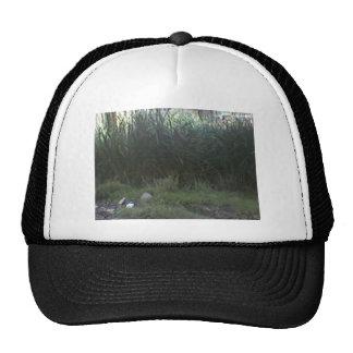 Attra Trucker Hat