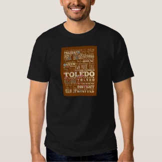 Attractions and Famous Places of Toledo, Spain T Shirt