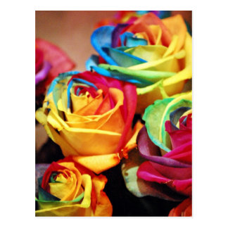 Attractive colourfull roses postcard
