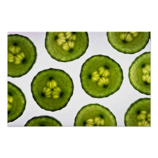 Attractive slices of cucumber poster