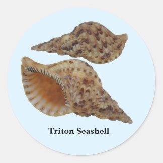 Attractive Triton Seashell Stickers