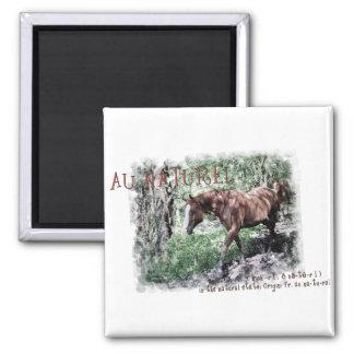 AU NATUREL- horse items Magnet
