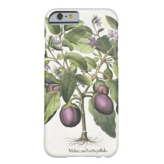 Aubergine: Melanzana fructu pallido, from the 'Hor Barely There iPhone 6 Case