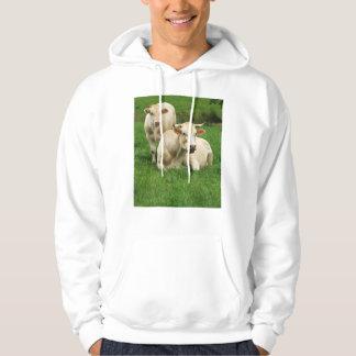 Aubrac Cows in a Field Hoodie