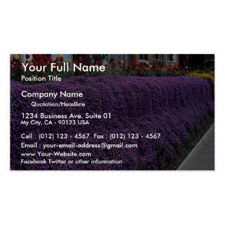 Aubreitta bank with Alyssum saxatile and tulips Business Card Templates