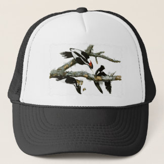 Aububon's Ivory-billed Woodpecker in Ash tree Trucker Hat