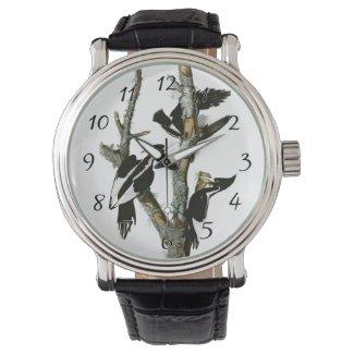 Aububon's Ivory-billed Woodpecker in Ash tree Wrist Watch