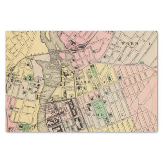 "Auburn, Lewiston 10"" X 15"" Tissue Paper"