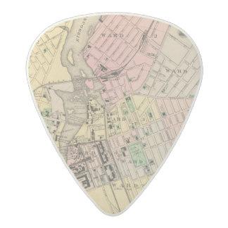 Auburn, Lewiston Acetal Guitar Pick