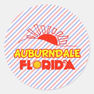 Auburndale, Florida Classic Round Sticker