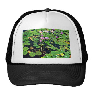Auckland Domain Winter Garden Trucker Hat