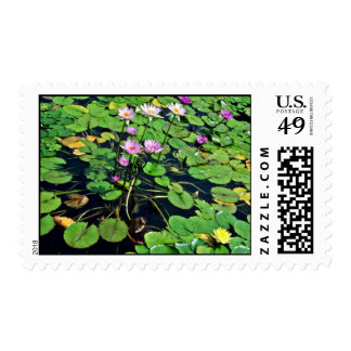 Auckland Domain Winter Garden Postage Stamp