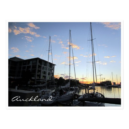 auckland harbour masts postcard