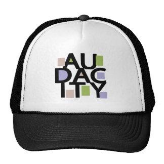 Audacity Mesh Hat