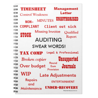 Auditing Swear Words Funny Auditor Joke Terms Notebook