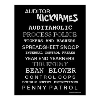 Auditor Nicknames Poster