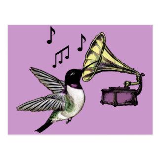 Auditory Nectar Postcard