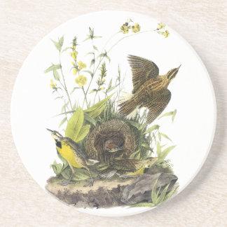 Audobon Eastern Meadowlark Coaster