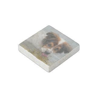 Audorable Australian Shepherd Stone Magnet