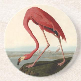 Audubon American Flamingo Coaster