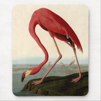 Audubon American Flamingo Mouse Pad