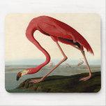 Audubon American Flamingo Mouse Pads