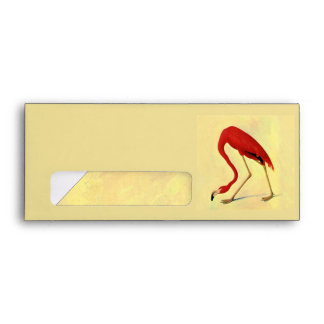Audubon American Flamingo Painting Envelopes