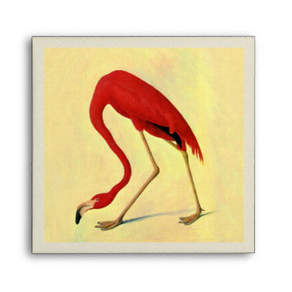 Audubon American Flamingo Painting Envelope