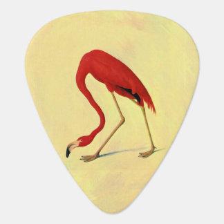 Audubon American Flamingo Painting Guitar Pick