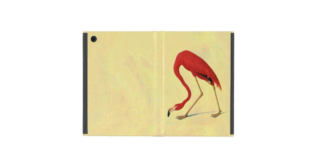American flamingo painting - photo#21