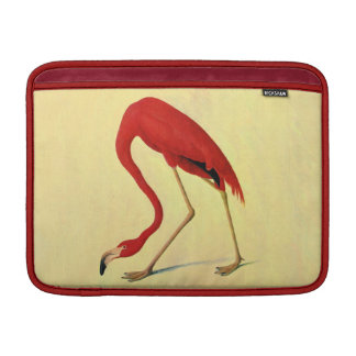 Audubon American Flamingo Painting MacBook Sleeves