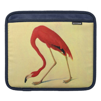 Audubon American Flamingo Painting iPad Sleeve