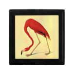 Audubon American Flamingo Painting Jewelry Boxes