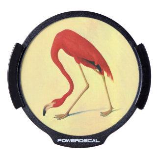 Audubon American Flamingo Painting LED Window Decal