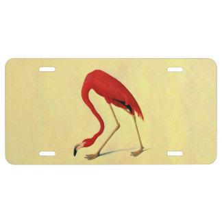 Audubon American Flamingo Painting License Plate
