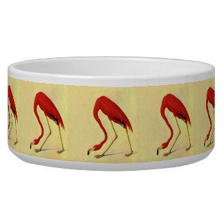 Audubon American Flamingo Painting Pet Bowl
